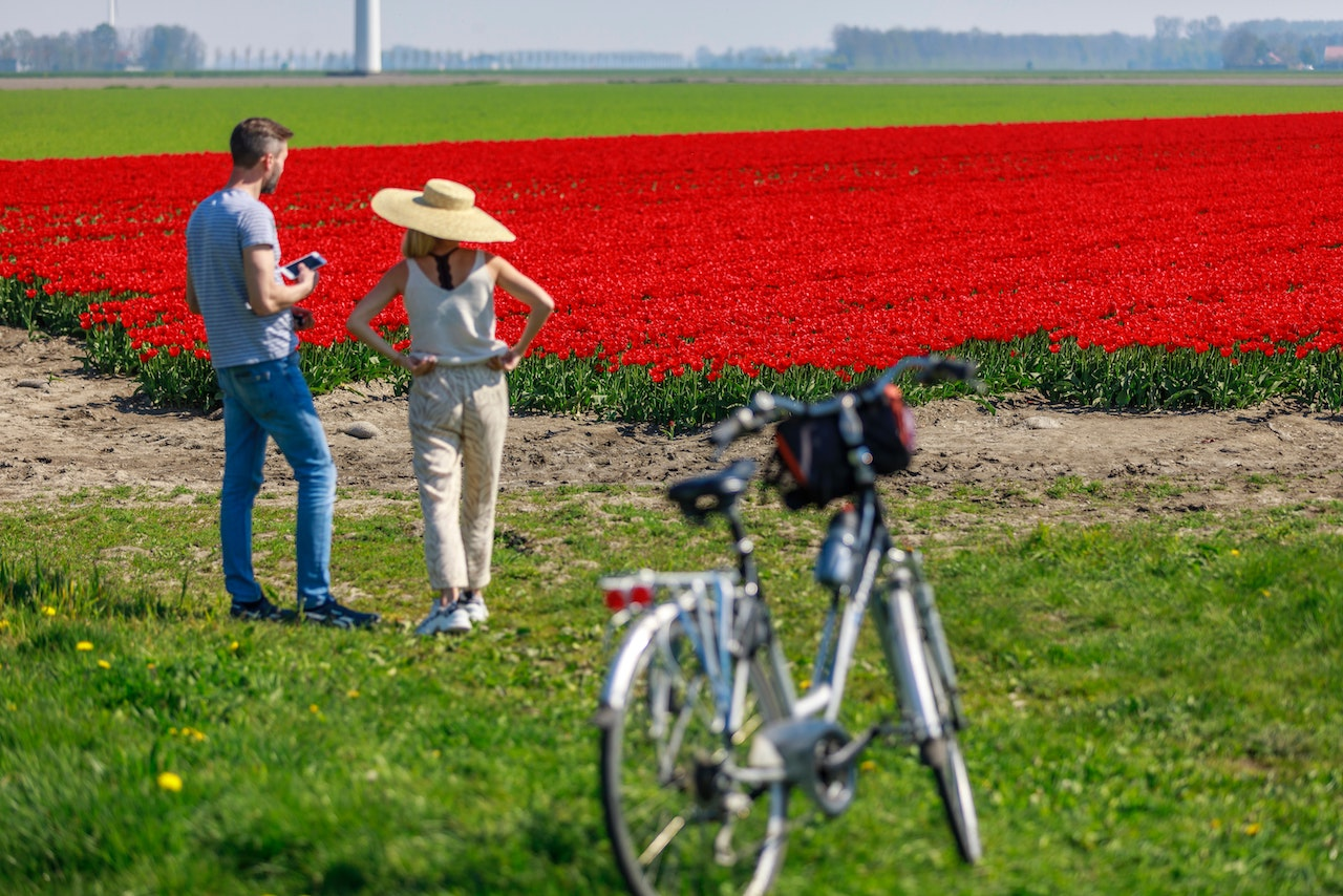 自転車で花を見に行く