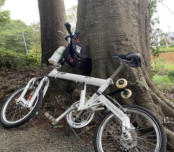 巨木とmy自転車