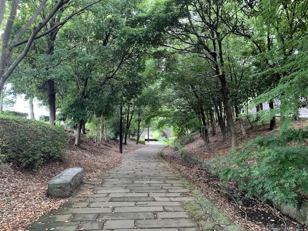 散歩道の石畳み