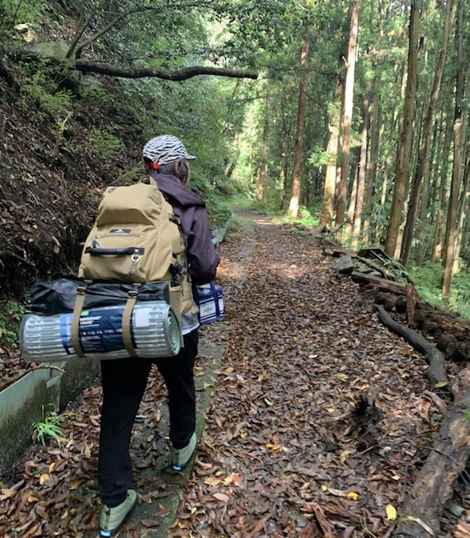 滝沢園に向かう林道