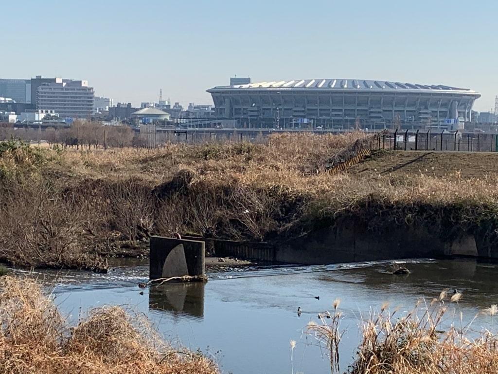 鶴見川から日産スタジアムをのぞむ