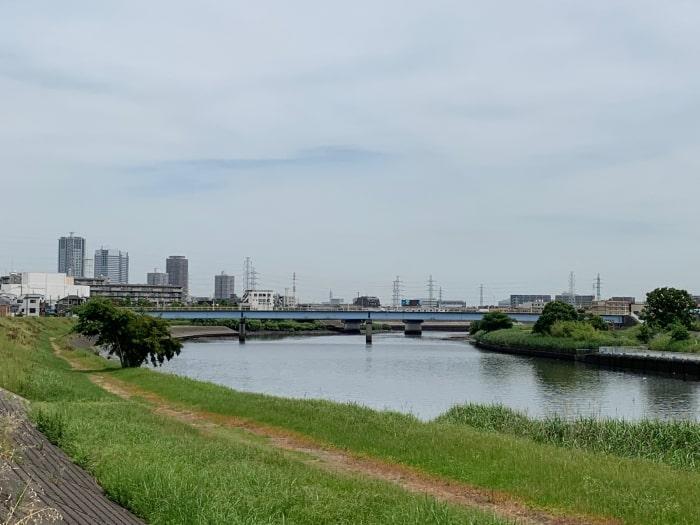 鶴見川 綱島
