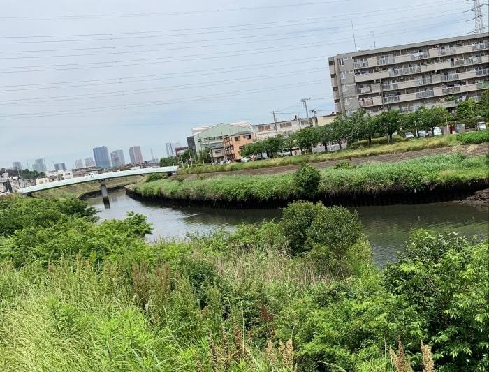 矢上川 鶴見川 合流