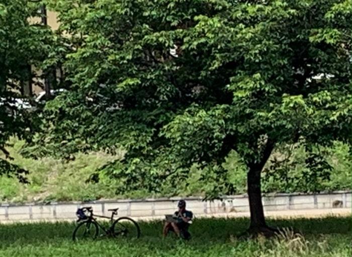 チェアリング 桜 自転車 パソコン